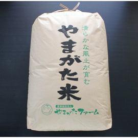 袋のデザインは異なる場合もあります