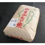 玄米 はえぬき 30kg 平成22年産