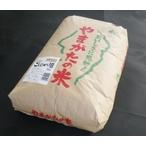 玄米 こしひかり 30kg